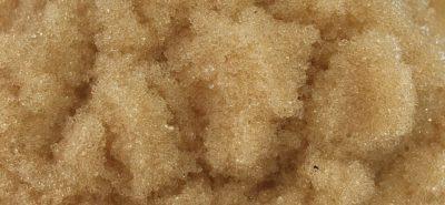 Hạt nhựa khử màu đường Amberlite