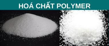 Hoá chất polymer